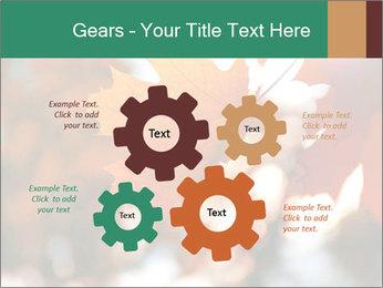 0000085989 PowerPoint Template - Slide 47