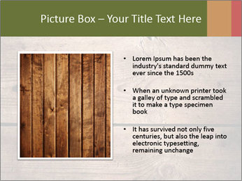 0000086006 PowerPoint Template - Slide 13