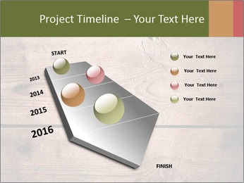 0000086006 PowerPoint Template - Slide 26