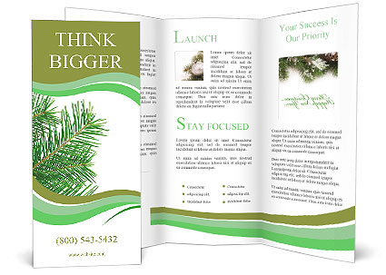 0000086008 Brochure Template