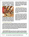 0000086011 Word Template - Page 4