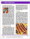 0000086013 Word Template - Page 3