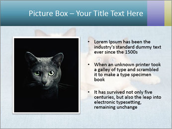 0000086019 PowerPoint Template - Slide 13