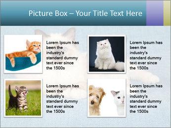 0000086019 PowerPoint Template - Slide 14