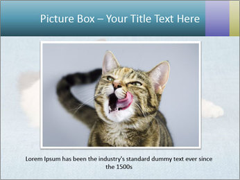 0000086019 PowerPoint Template - Slide 16
