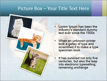 0000086019 PowerPoint Template - Slide 17