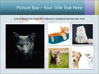 0000086019 PowerPoint Template - Slide 19