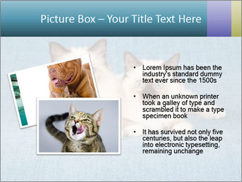 0000086019 PowerPoint Template - Slide 20