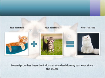 0000086019 PowerPoint Template - Slide 22