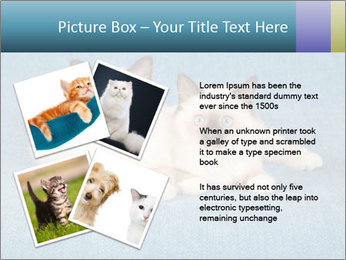 0000086019 PowerPoint Template - Slide 23