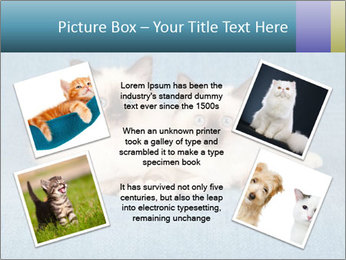 0000086019 PowerPoint Template - Slide 24