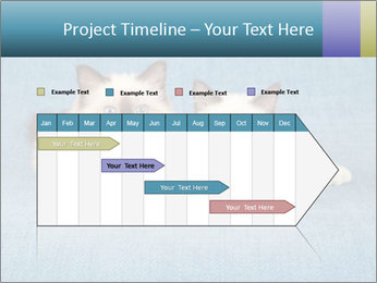 0000086019 PowerPoint Template - Slide 25