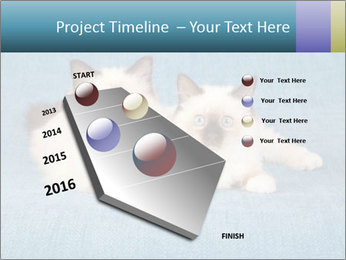 0000086019 PowerPoint Template - Slide 26