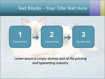 0000086019 PowerPoint Template - Slide 71