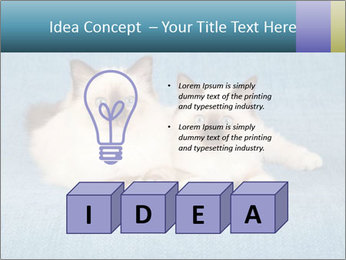 0000086019 PowerPoint Template - Slide 80