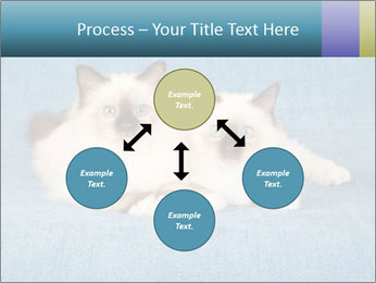 0000086019 PowerPoint Template - Slide 91