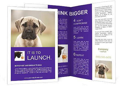 0000086024 Brochure Templates