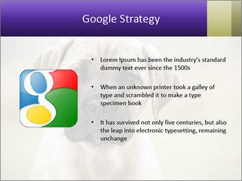 0000086024 PowerPoint Templates - Slide 10