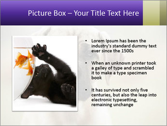 0000086024 PowerPoint Template - Slide 13