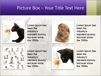 0000086024 PowerPoint Template - Slide 14