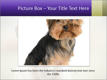 0000086024 PowerPoint Template - Slide 16