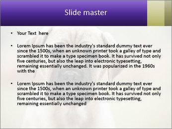 0000086024 PowerPoint Templates - Slide 2