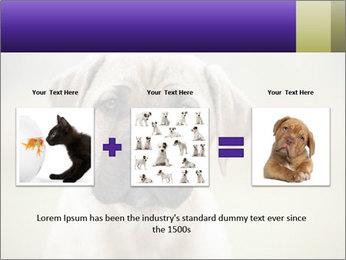 0000086024 PowerPoint Templates - Slide 22