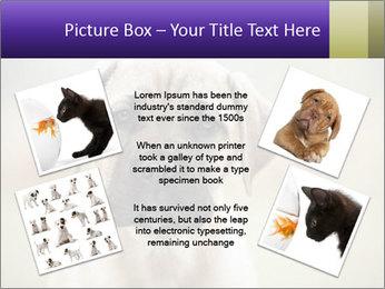 0000086024 PowerPoint Templates - Slide 24