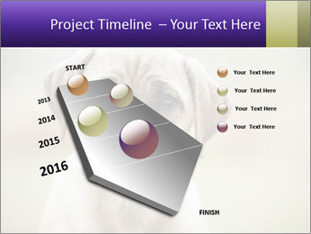 0000086024 PowerPoint Template - Slide 26
