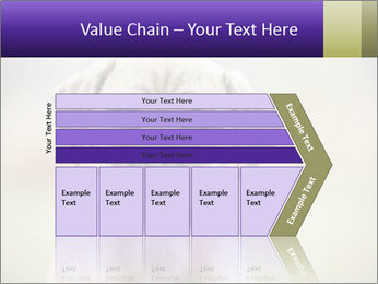 0000086024 PowerPoint Templates - Slide 27