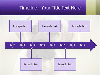 0000086024 PowerPoint Templates - Slide 28
