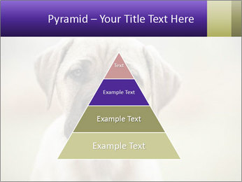 0000086024 PowerPoint Templates - Slide 30