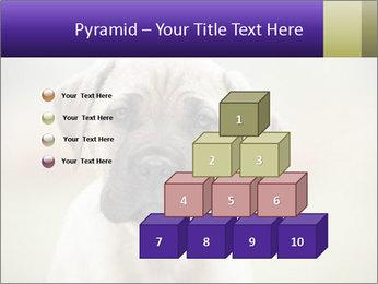 0000086024 PowerPoint Templates - Slide 31