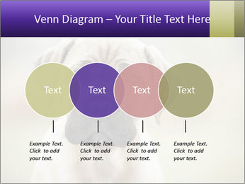 0000086024 PowerPoint Templates - Slide 32