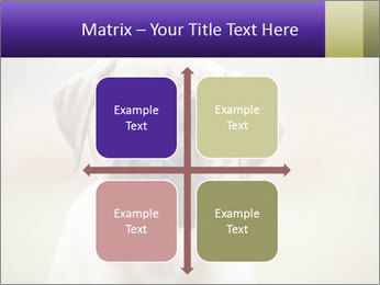0000086024 PowerPoint Templates - Slide 37
