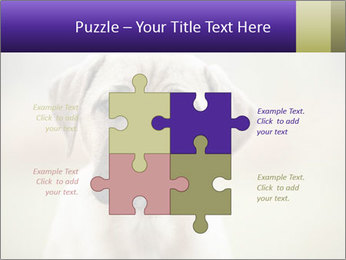 0000086024 PowerPoint Templates - Slide 43