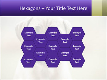 0000086024 PowerPoint Templates - Slide 44