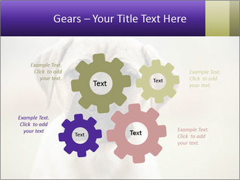 0000086024 PowerPoint Templates - Slide 47