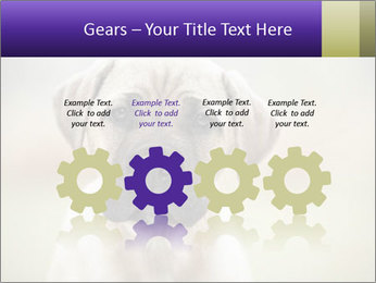 0000086024 PowerPoint Templates - Slide 48