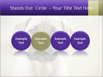 0000086024 PowerPoint Template - Slide 76