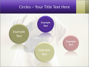 0000086024 PowerPoint Templates - Slide 77