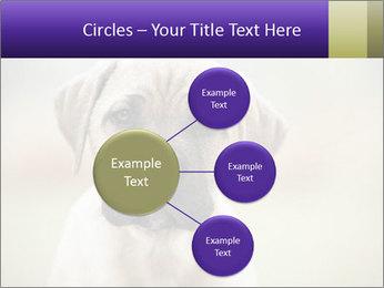 0000086024 PowerPoint Templates - Slide 79