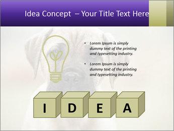 0000086024 PowerPoint Templates - Slide 80