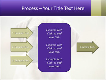 0000086024 PowerPoint Templates - Slide 85