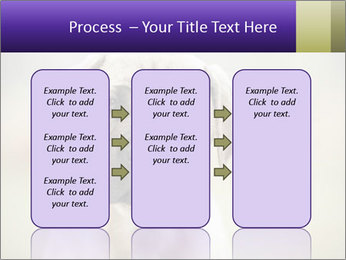 0000086024 PowerPoint Templates - Slide 86