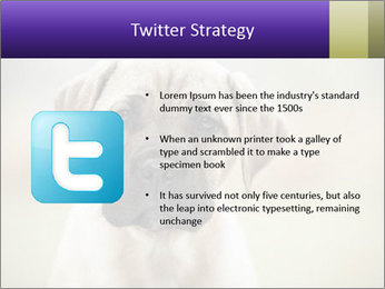 0000086024 PowerPoint Templates - Slide 9