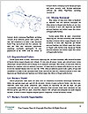 0000086028 Word Template - Page 4