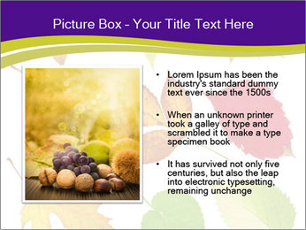 0000086029 PowerPoint Templates - Slide 13