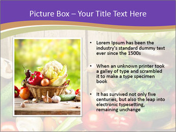 0000086033 PowerPoint Template - Slide 13