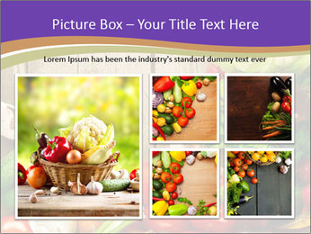 0000086033 PowerPoint Template - Slide 19